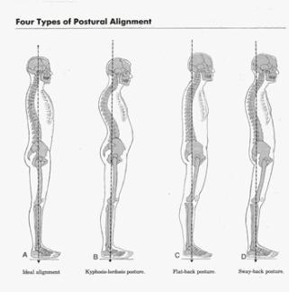 4 person posture